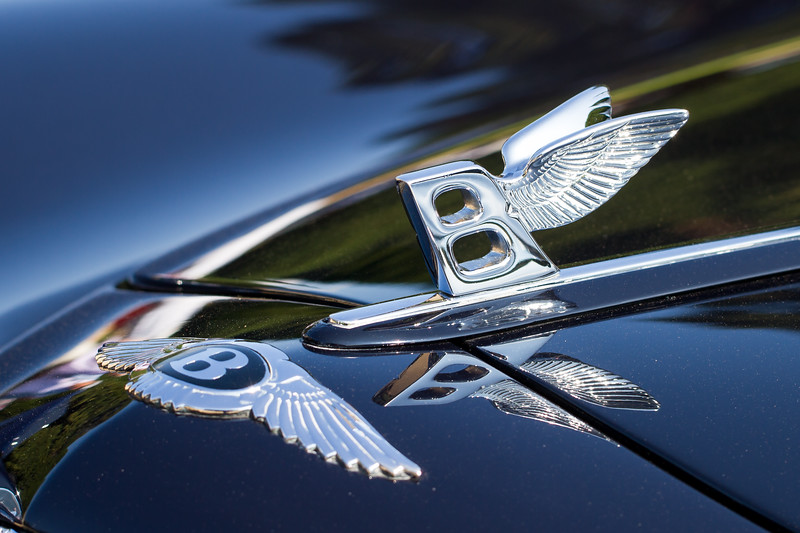 Bentley Flying B Mascot on 1948 Bentley Mark VI Pininfarina Facel Métallon 'Cresta'