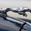 Leaping Jaguar Mascot / 1961 Jaguar MkII 3.8 Reg 606LWL