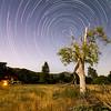 "<div class=""mycaption""><a href=""http://photos.chrisskopec.com/buy/21075926_cc3fHD/2129420601_QFJrVkC/"" class=""button"">Purchase a Print</a>Los Coyotes Indian Reservation Star Trails <div class=""my-clear""></div> </div>"