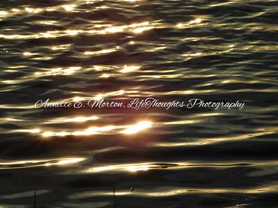 Lake Montebello, Baltimore MD