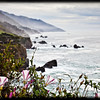 BIG SUR_-504-Edit-5