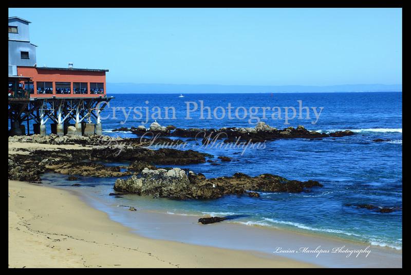 Tide Pool at Monterey CA