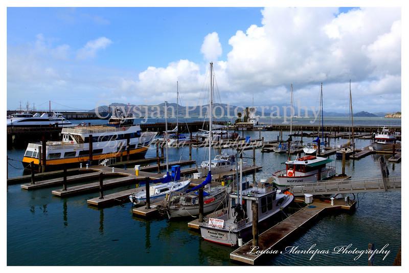 Marina at San Francisco CA