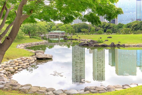 Summer in Hamarikyu Garden, Tokyo, Japan