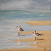 """Beach Birds"" (oil) by Carla Pairett Parker"