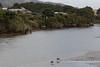 Raglan Harbour