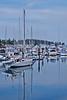 Sidney Harbour 11