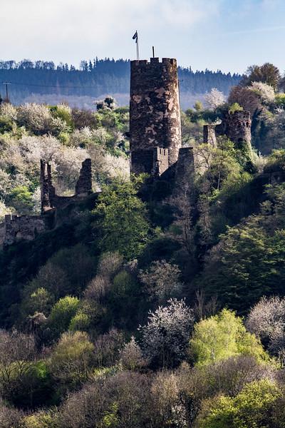 Fürstenberg Castle