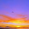 *Sunrise, Santa Barbara, CA