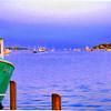 Harbor Optics
