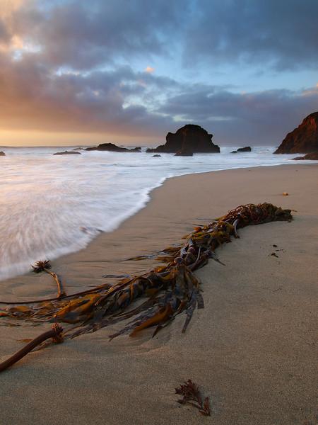 Atavism of Isometry - Northern California Coast