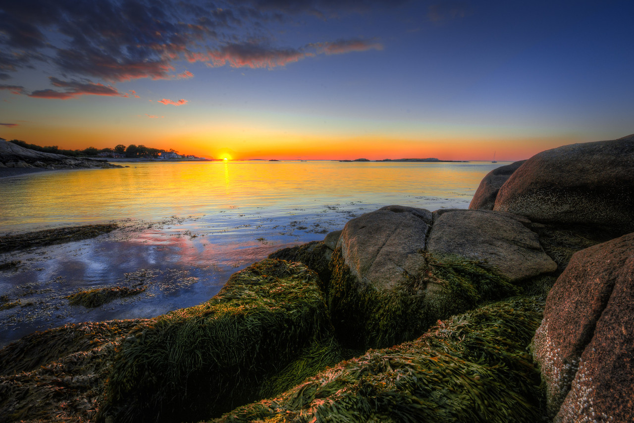 sweet reality | cohasset, massachusetts
