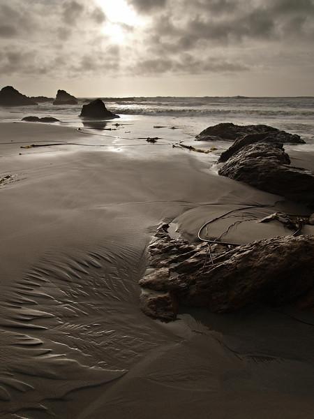 Mocha Pacifica - Northern California Coast