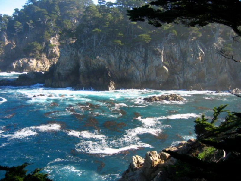 Cyprus Cove,Point Lobos