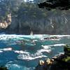 Cyprus Cove,Point Lobos