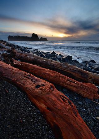 Rialto Red - Washington Coast