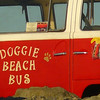 Doggie Beach Bus, Encinitas, California