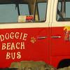 Doggie Beach Bus, Encinitas, California