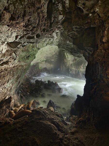 Sea Lion Cave I - Oregon Coast