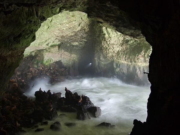Sea Lion Cave II - Oregon Coast