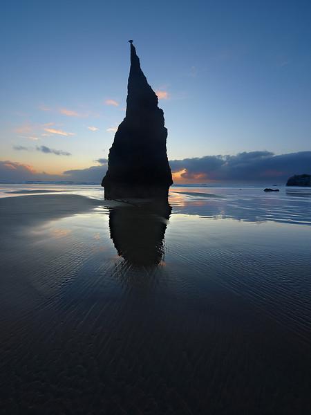 The Pinnacle - Oregon Coast