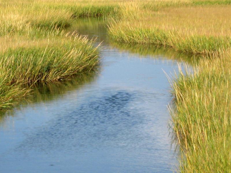 Menemsha Creek