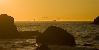 Leaving the Golden Gate