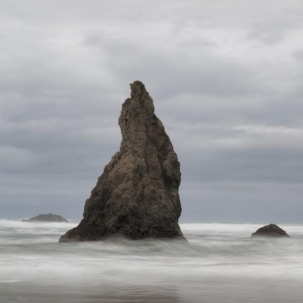 ~ Stone Seal ~ Bandon Beach Oregon Coast