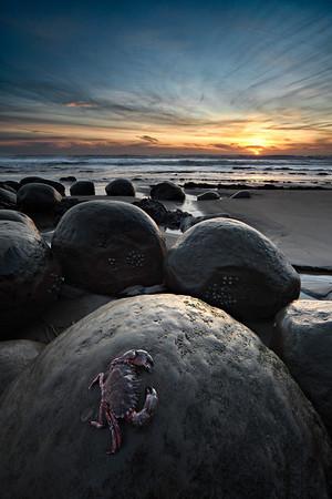 - Crustacean Twilight -<br /> <br /> Bowling Ball Beach, Mendocino Coast