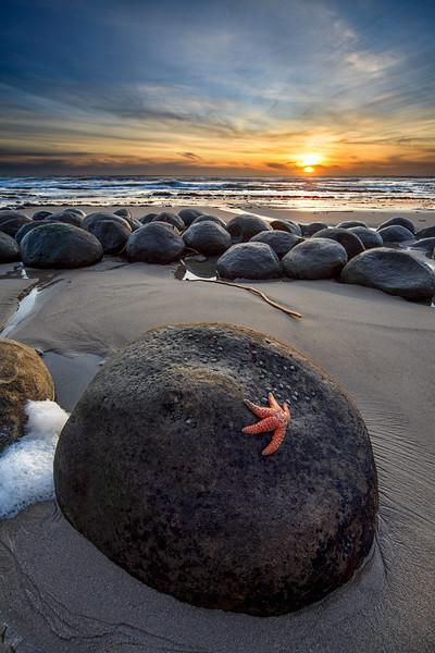 - Evening Star -  Bowling Ball Beach, Mendocino Coast