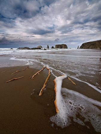 Low Tide - Oregon Coast