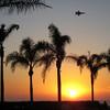 Fighter Jet Approaching, Hotel del Coronada