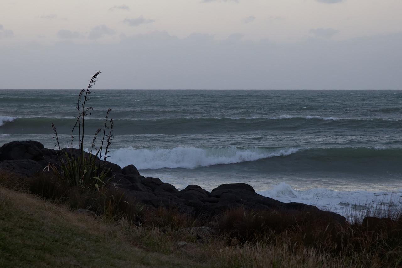 Manu Bay, Raglan Evening