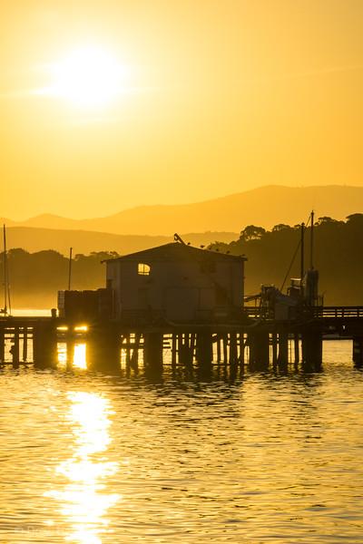 Monterey at Dawn no. 1