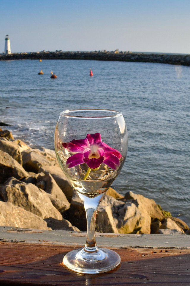 Orchid, Wine Glass, and Lighthouse