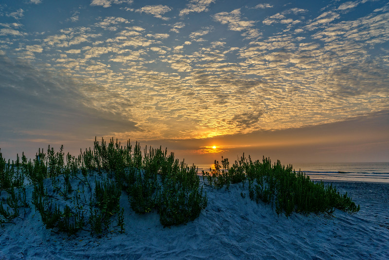 Wahine Sunrise