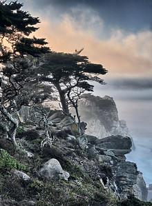 North Point, Point Lobos, California