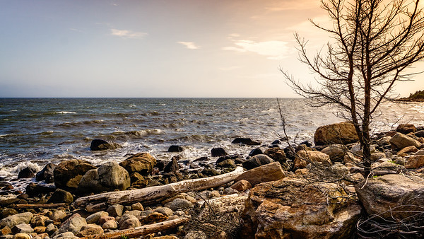 Late Afternoon Shore at Meigs Point Hammonasset