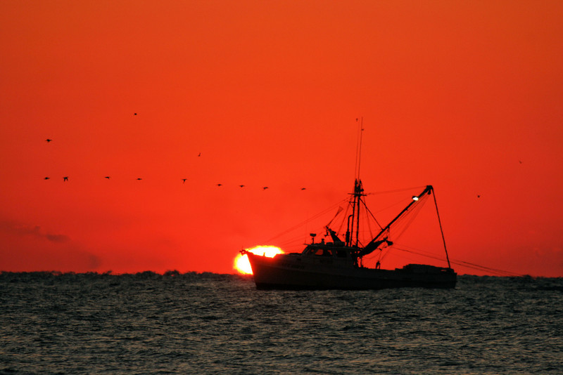 """Sunrise Trawler"""
