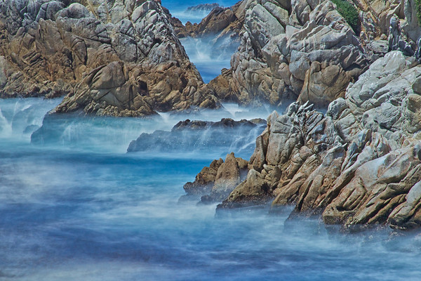 Point Lobos Mist