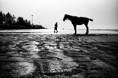 B20:The sand creates patterns and texture while the horse waits for its rider at dawn in Mandarmoni,West Bengal