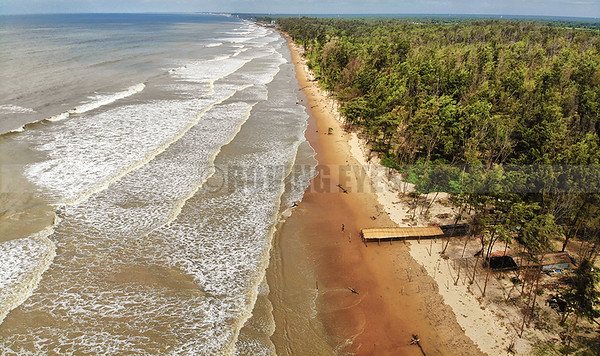 B25:The sea,sand and the trees,all meet at the horizon in this unique perspective of Tajpur beach,West Bengal