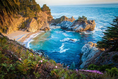 McWay Falls with Naked Lady Flowers