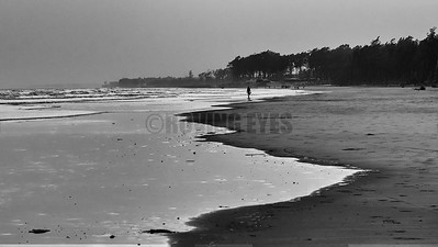 B5:The ocean meets the sand in an 'S' curve as a fisherwoman walks back home at dusk in Tajpur,West Bengal.