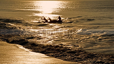 B2:Fishermen returning at sunrise with their morning catch, at Puri,Odissa