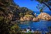 Bluefish Cove & Guillemot Island
