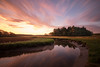 Rachel Carson Sunrise, Wells, ME