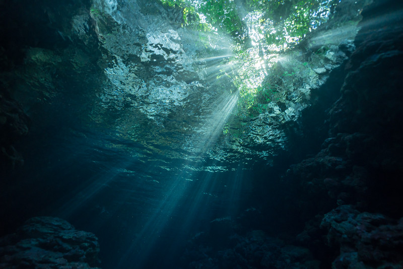 Forest Cavern