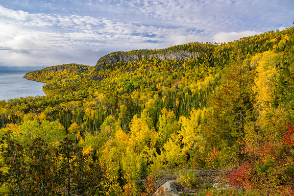 Fall Color Overlook