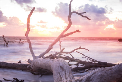 black rock beach florida ocean water long exposure sunrise driftwood golden hour colorful